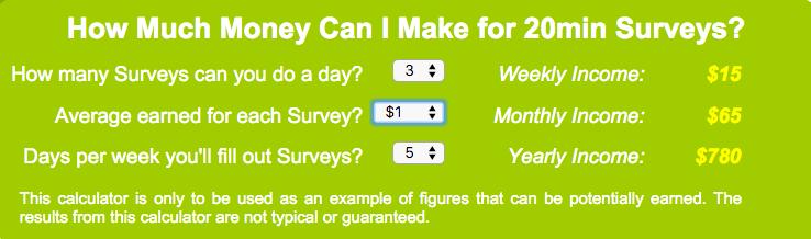 What I put into the income calculator