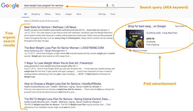 Search Engine Results Example