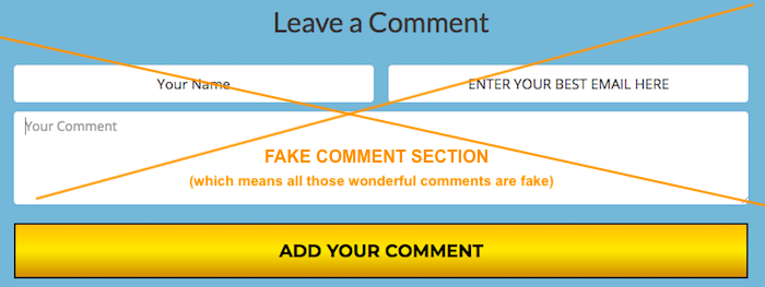 Fake Comments