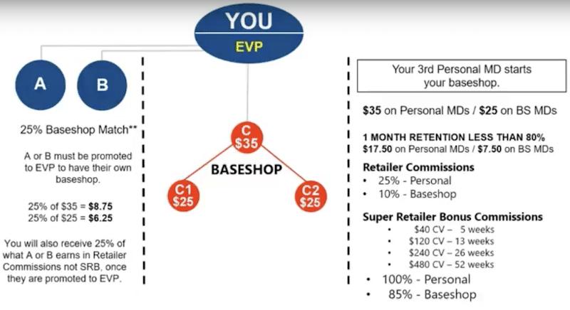 Baseshop Earnings Example