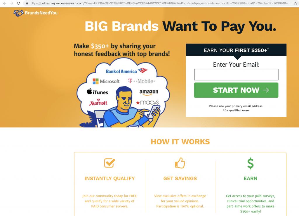 Brands Need You Website