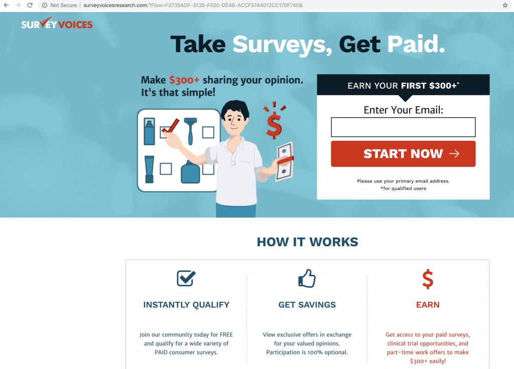 Survey Voices Website