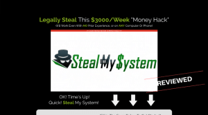 Steal My System - Scam or Legit