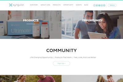 Xyngular website homepage