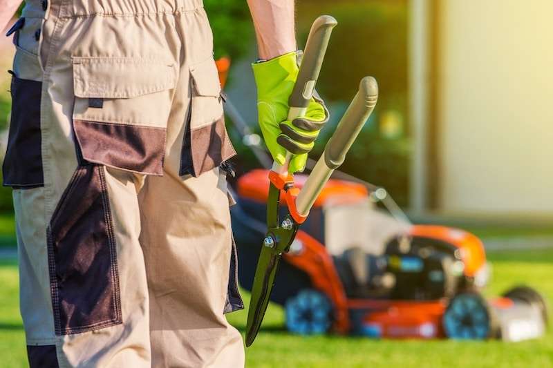 Landscaping and Lawn Mowing Service