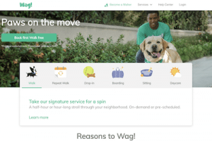 Review of the Wag! website