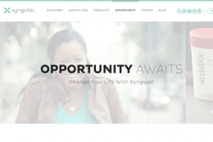 Business opportunity page on Xyngular website