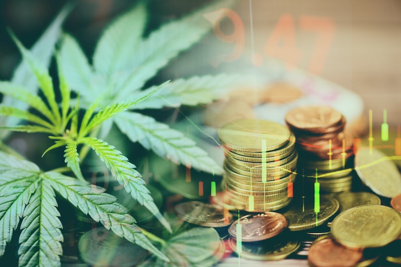 Business cannabis marijuana stock exchange market graph business / cannabis leaves on trading and investment of financial money price stock chart exchange growth and crisis money gold coin concept